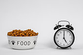 A bowl of processed dog food with paws and inscription FOOD on its sides, next to the alarm clock with hands set to five-o-clock time. Lunch or other pet meal memorizing. Indoors, white background.