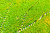 Rural dirt roads for tractors in green grass fields in summer, aerial view of heights.