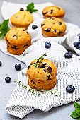 Fresh homemade delicious blueberry muffins decorated with thyme, fresh berries and mint on grey concrete background.