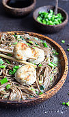 Soba noodles served with chicken meatballs and green onion. Buckwheat noodles. Gluten free. Asian food. Copy space.