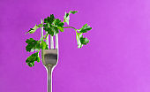sprig of fresh green parsley on a fork on a purple background, greens