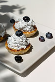 Healthy chia seeds pudding with blackberry in cottage cheese tartlet. Dark plant shadow on table.