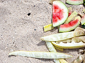 Flat lay. Eaten watermelon and melon rinds on the sand on a sunny summer day. The concept of enjoying delicious juicy fruits while relaxing at sea. Copy space.