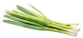 spring onions isolated on white background