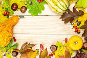 Maple leaf autumn. Natural harvest with orange pumpkin, fall dried leaves, red berries and acorns, chestnuts on wooden background in shape frame. Beauty Holiday autumn festival concept. Fall scene.