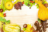 Thanksgiving background. Autumn Natural harvest with orange pumpkin, fall dried leaves, red berries and acorns, chestnuts on wooden background in shape frame. Design mock up. Horizontal.