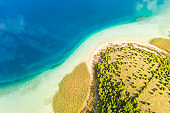 Aerial view of beach and trees,  Cres Island,  Croatia