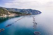 Aerial view of fish farms in Adriatic Sea, Gargano National Park, Puglia, Italy