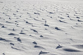 Textured winter background of snow field with bizarre pattern from snowy dunes and drifts
