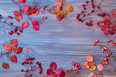 Flat lay composition with colorful autumn leaves and small red apples on a wooden background