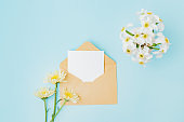 Mockup white greeting card and envelope with flowers in a vase on a blue background