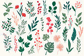 Bundle of colorful floral decorative elements. Botanical objects, floral graphic pack. Leaves, flowers, herbs and branches vector illustration.
