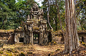 Travel concept. Beautiful view of ancient mysterious ruin in amazing Angkor, Siem Reap, Cambodia. Angkor is a popular tourist attraction.Artistic picture. Beauty world.