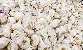 many heads of garlic on a bench in rio de janeiro