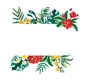 Summer tropical frame with palm leaves and flowers.