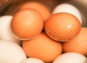 Boiled farm fresh shell eggs