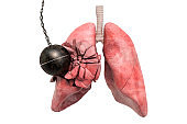 Human lungs destroying by wrecking ball. Pain in lungs, lungs disease concept. 3D rendering isolated on white background