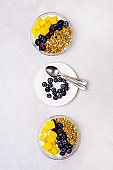 Bowls of Muesl and Yogurt with Berry and Mango Healthy Breakfast Diet Food Vertical