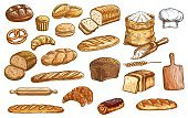 Bread and pastry color isolated vector sketches