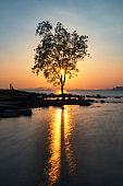Silhouette couple and tree at sunset at Koh Kwang, Krabi
