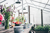 row of small metal buckets and pruners near vases with different fresh flowers