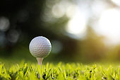 golf ball on tee in a beautiful golf course with morning sunshine