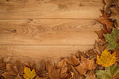 Flay lay of dried autumnal leaves on a wooden table with copy space