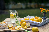 It is time for family to enjoy homemade lemonade