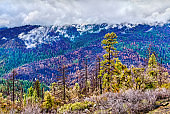 Landscape of Yosemite National Park in California