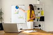 Webinar, online training, video tutorials