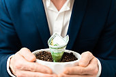 Growing money in flowerpot. Investment And Interest Concept. businessman protects growing investments