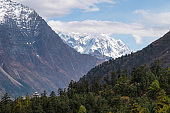 Snow mountains and pine forest landscape in Manaslu circuit trekking route, Himalaya mountains range in Nepal