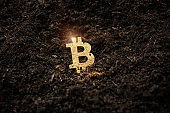 Bitcoin hold concept. Cryptocurrency stored in the ground - saving symbol