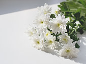 Bouquet of chrysanthemum flowers lying on white window sill. Sunny morning in cozy home.