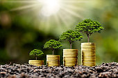 Coin pile with tree growing on top of coin, money growth idea and sustainable investment.