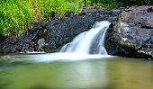 Magical stream in the rainforest