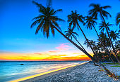 Sunset on the beach with tilted coconut trees, long sandy beaches and beautiful golden sky