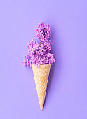 Composition of ice cream cone with purple lilac flowers on a violet background. Flat Lay. Top View. Creative summer concept