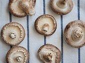 Fresh organic vegetables shiitake mushrooms