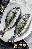 Fresh sea bream fish ready for cooking. Gray background. top view.