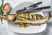 Baked pike perch, pikeperch fish. Gray background. Top view