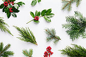 Collection of decorative Christmas plants.