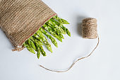 Green asparagus on burlap sack. Bag and twine. Bundle of ripe fresh asparagus. Healthy organic food. Cooking in home. Natural vitamins, raw ingredient for eating. Handpicked bio asparagus