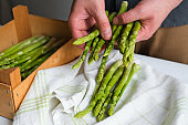 Green asparagus in the hands of a men. Bunch of ripe fresh asparagus. Healthy organic food. Cooking in home. Natural vitamins, raw ingredient for eating. Handpicked bio asparagus