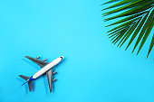 White toy airplane and palm leaf on blue background. Travel holiday concept.