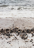 Different texture on the beach - water and sand, stones and pebbles, waves and splashes.
