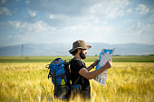 Hiking man in nature at summer, traveler walking on footpath in the field.