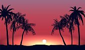 Red sunset and silhouettes of palm alley. Evening tropical beach on background setting sun.