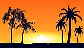 Orange tropical sunset silhouettes of palm trees. Tropical beach on background yellow setting sun.