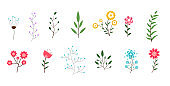 minimal flowers and leaves collection decorative vector design illustration